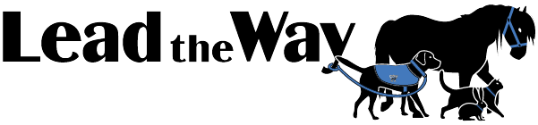 Lead the Way Institute Logo